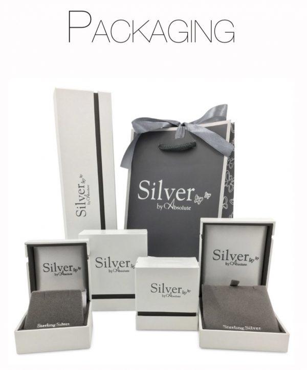 Absolute Sterling Silver Earrings SE144SL