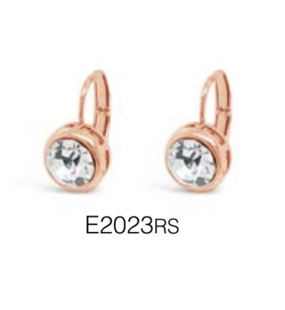 ABSOLUTE E2023RS EARRINGS