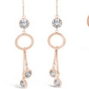 ABSOLUTE E090RS EARRINGS
