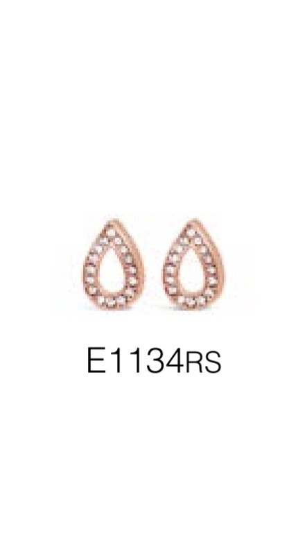 ABSOLUTE E1134RS EARRINGS